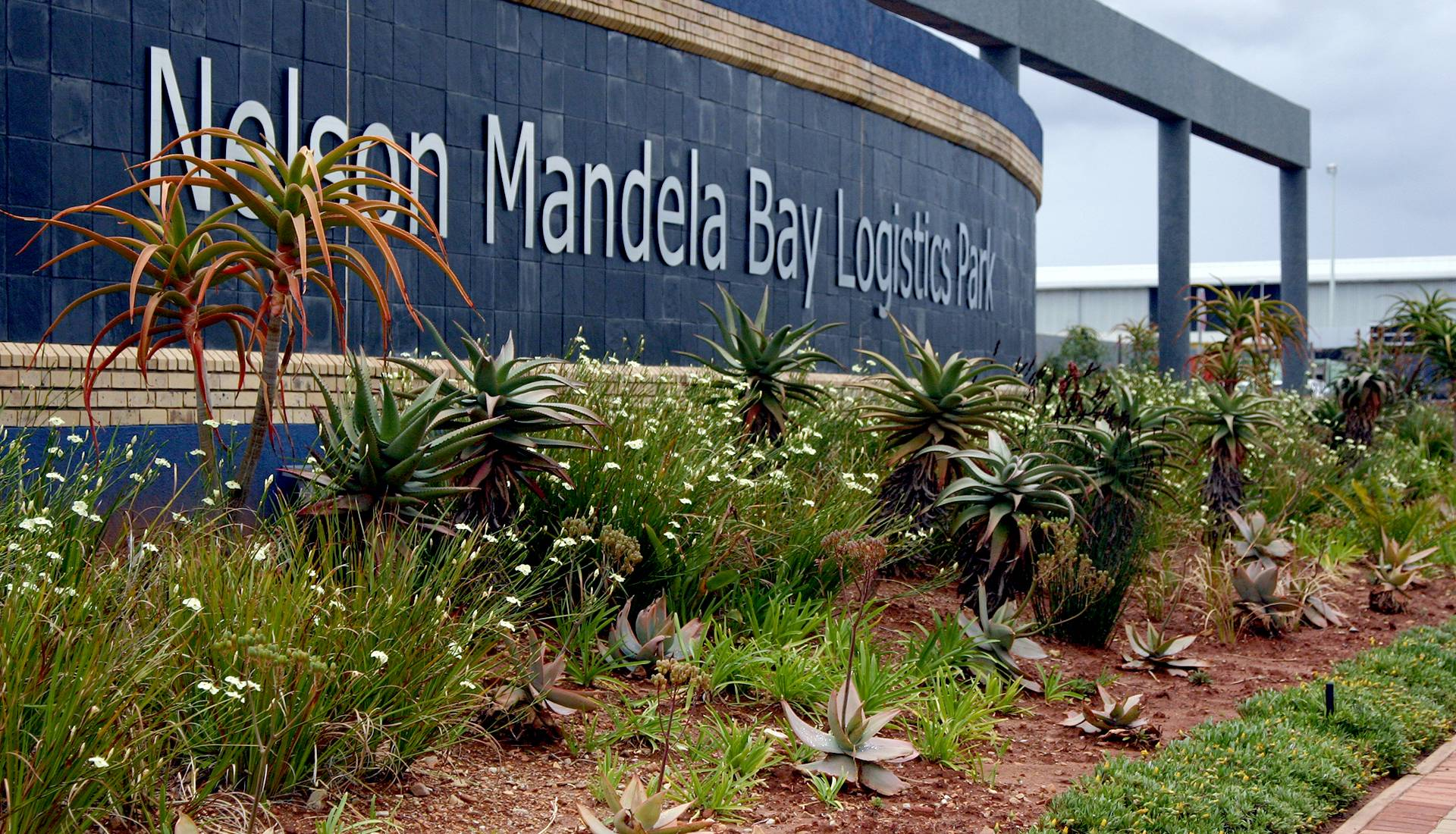 landscaping-irrigation-maintenance-port-elizabeth