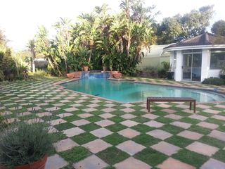 landscaping checkerboard lawn