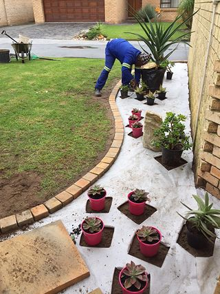 landscaping low maintenance gravel garden pe