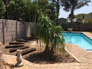 plant relocation ponytail palm pool garden